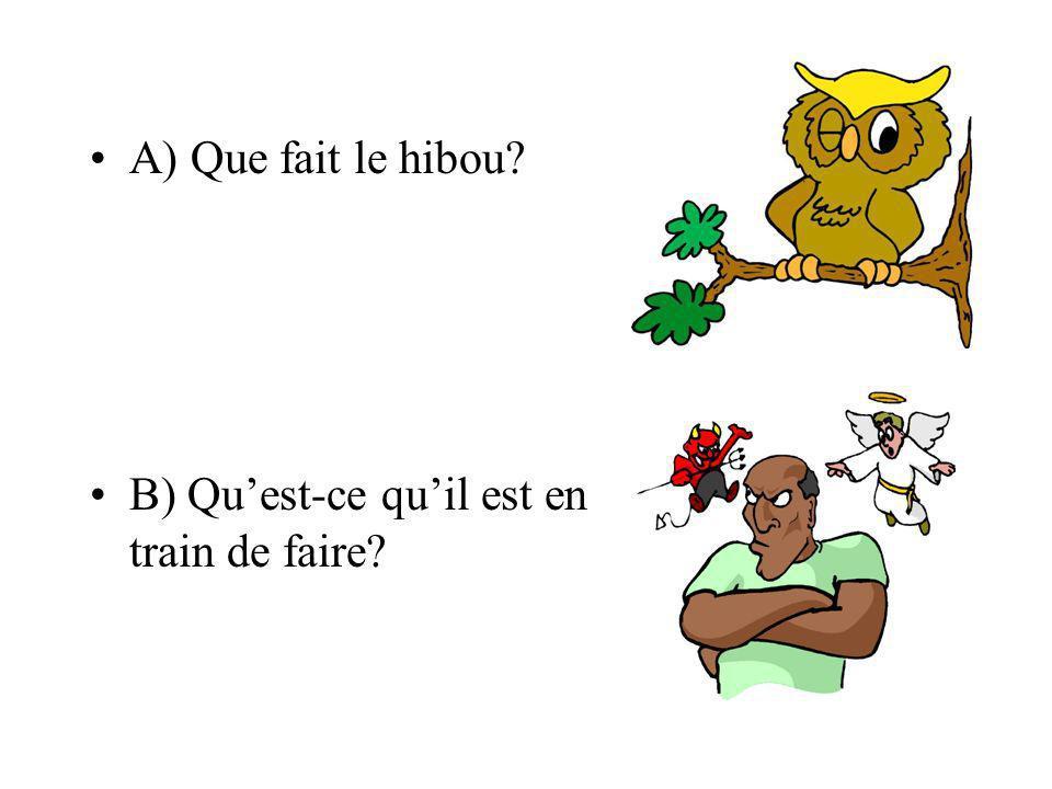 A) Que fait le hibou? B) Quest-ce quil est en train de faire?