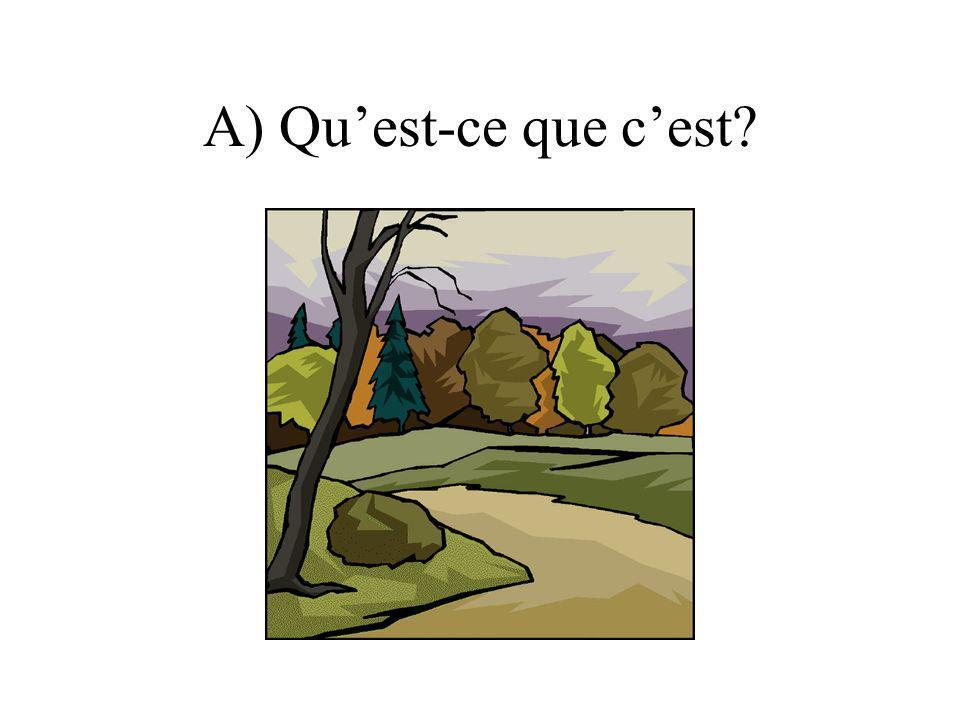 A) Quest-ce que cest?