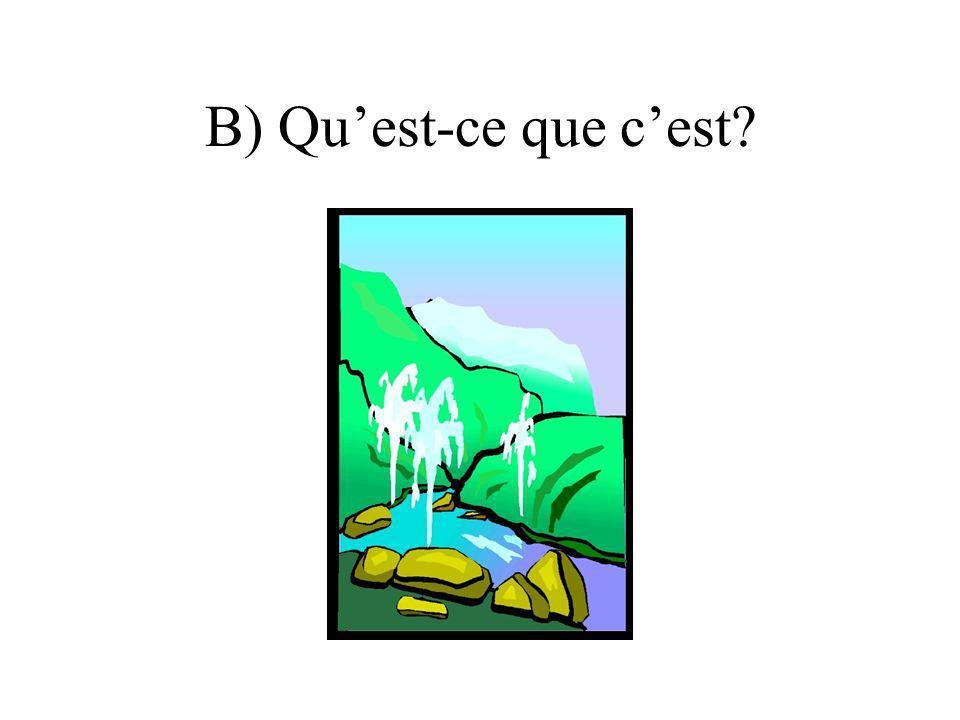B) Quest-ce que cest?