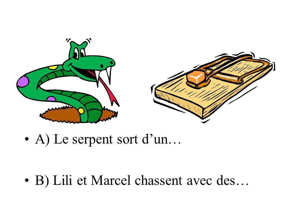 A) Le serpent sort dun… B) Lili et Marcel chassent avec des…