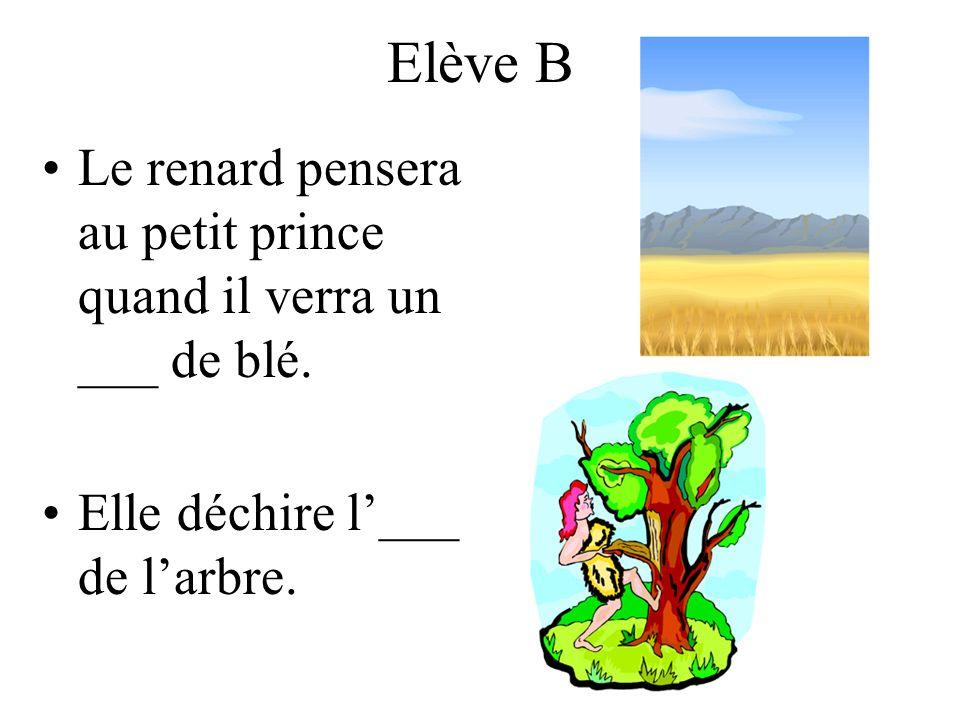 Elève B Le renard pensera au petit prince quand il verra un ___ de blé.
