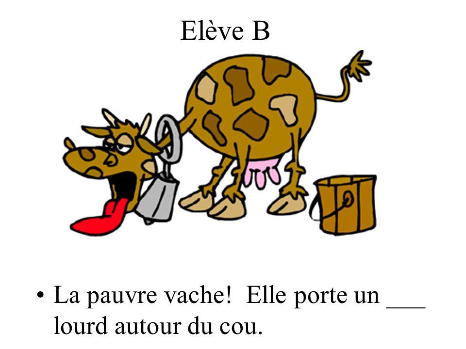 Elève B La pauvre vache! Elle porte un ___ lourd autour du cou.