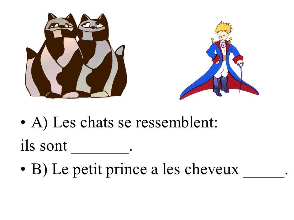 A) Les chats se ressemblent: ils sont _______. B) Le petit prince a les cheveux _____.