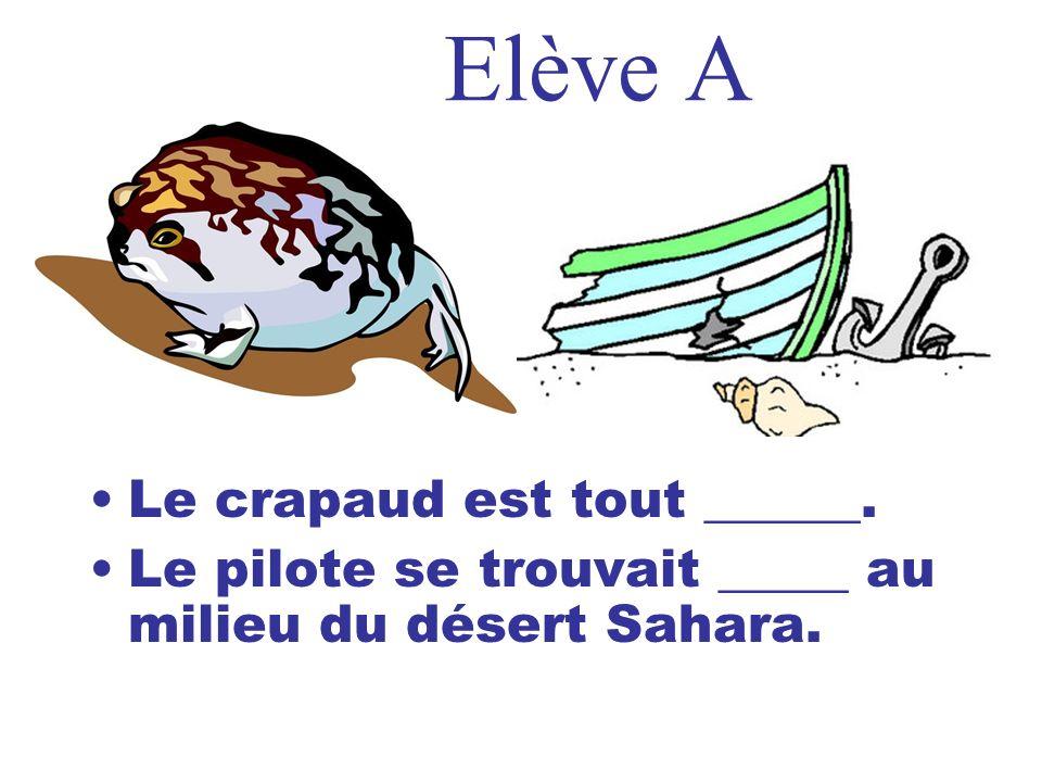 Elève A Le crapaud est tout ______. Le pilote se trouvait _____ au milieu du désert Sahara.