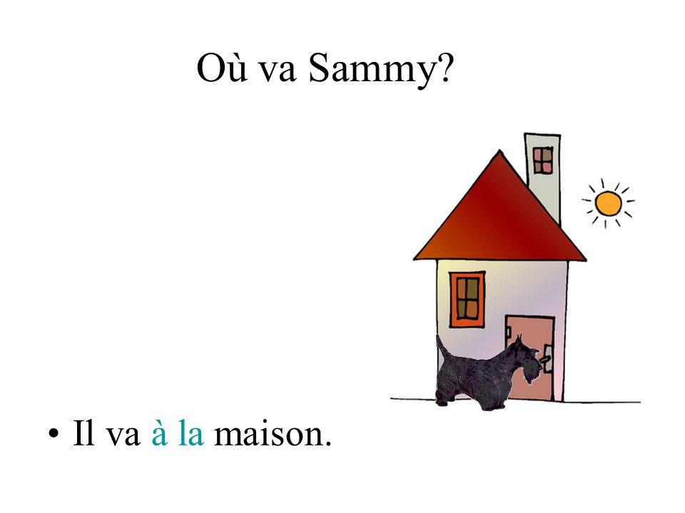 Où va Sammy? Il va à la maison.