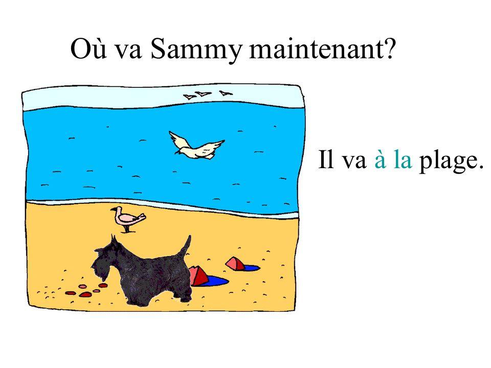 Où va Sammy maintenant? Il va à la plage.