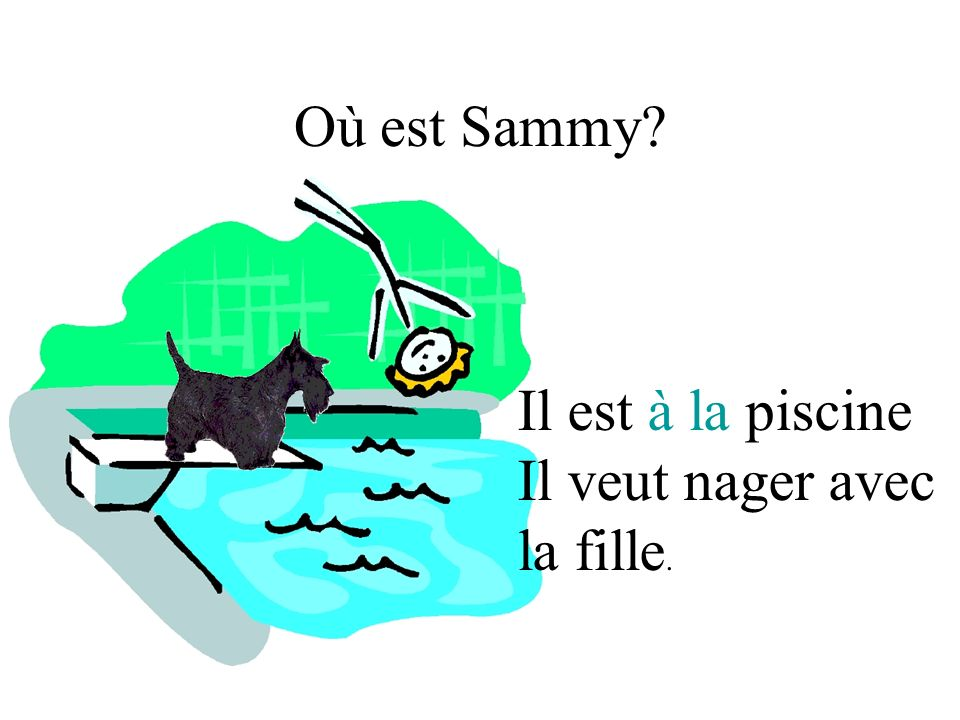 Où est Sammy? Il est à la piscine Il veut nager avec la fille.