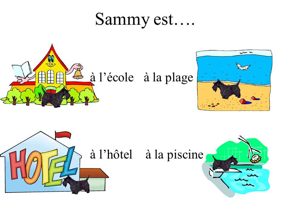 Sammy est…. à lécole à la plage à lhôtel à la piscine