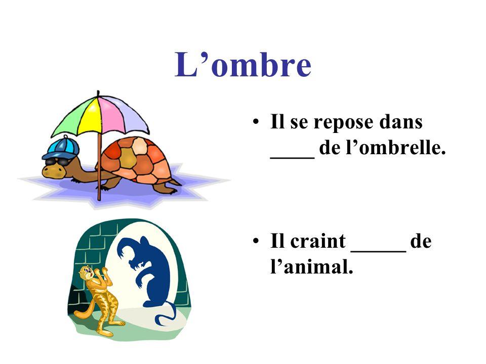 Lombre Il se repose dans ____ de lombrelle. Il craint _____ de lanimal.