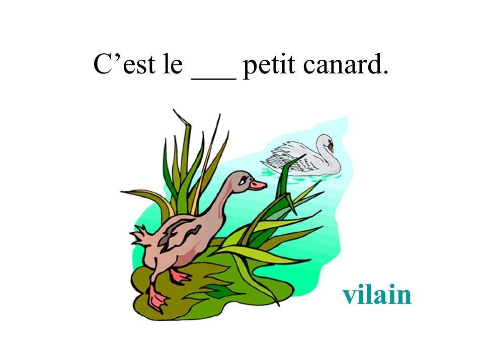 Cest le ___ petit canard. vilain