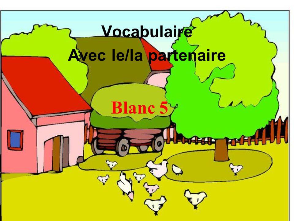 Blanc 5 Vocabulaire Avec le/la partenaire