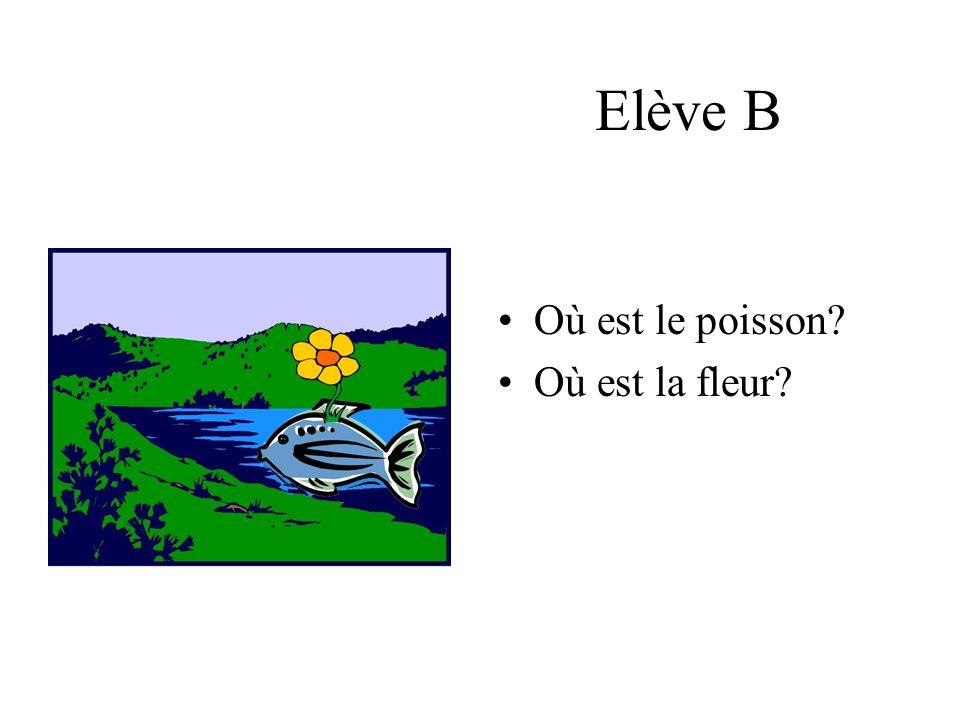 Elève B Où est le poisson Où est la fleur