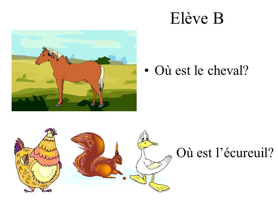 Elève B Où est le cheval? Où est lécureuil?