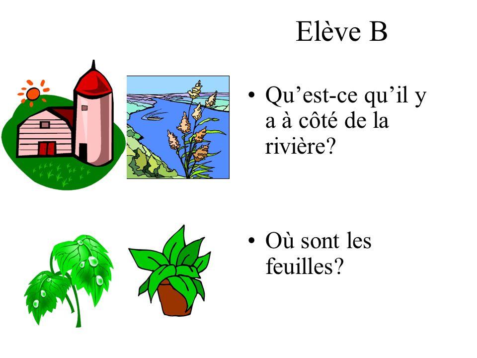 Elève B Quest-ce quil y a à côté de la rivière? Où sont les feuilles?