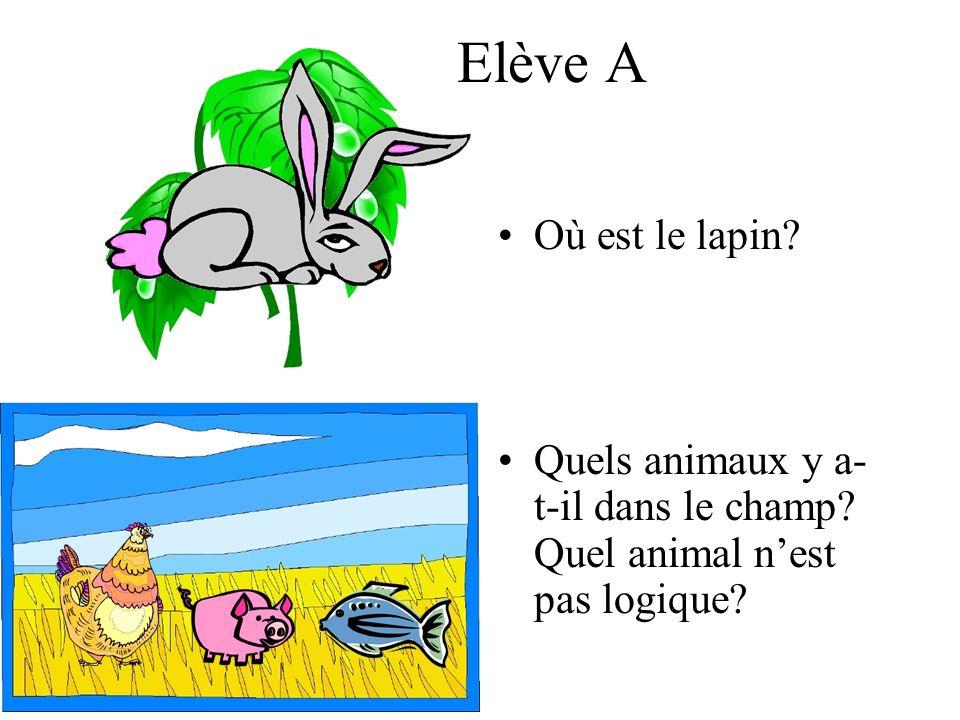 Elève A Où est le lapin? Quels animaux y a- t-il dans le champ? Quel animal nest pas logique?