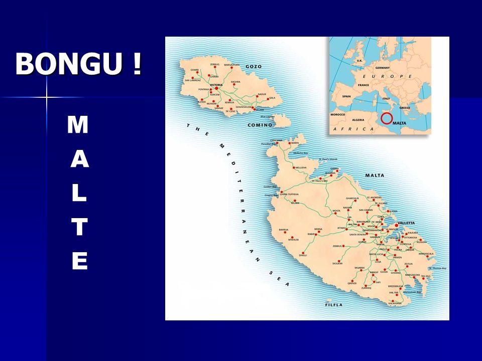 BONGU ! MALTEMALTE