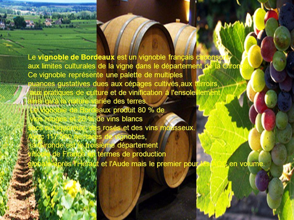 Le vignoble de Bordeaux est un vignoble français circonscrit aux limites culturales de la vigne dans le département de la Gironde. Ce vignoble représe