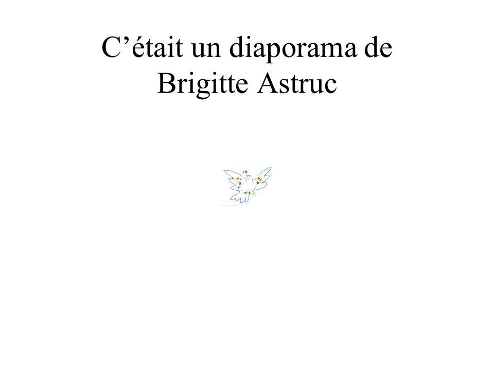 Cétait un diaporama de Brigitte Astruc