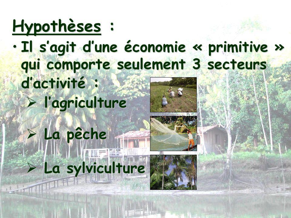 Il sagit dune économie « primitive » qui comporte seulement 3 secteurs dactivité :Il sagit dune économie « primitive » qui comporte seulement 3 secteu
