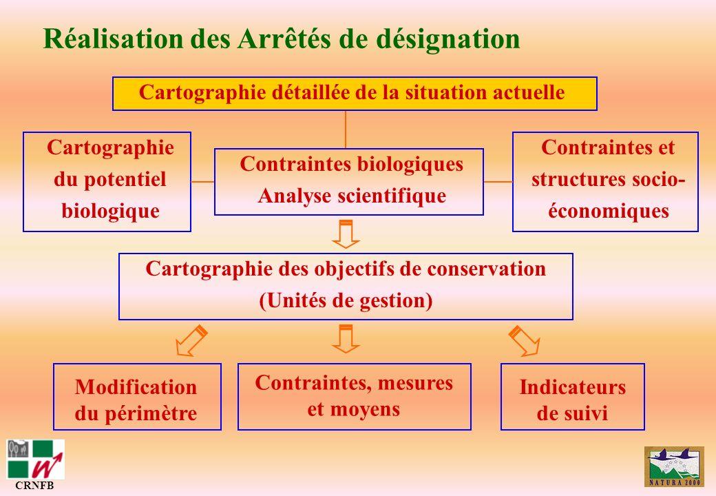 Réalisation des Arrêtés de désignation CRNFB Cartographie des objectifs de conservation (Unités de gestion) Cartographie détaillée de la situation act