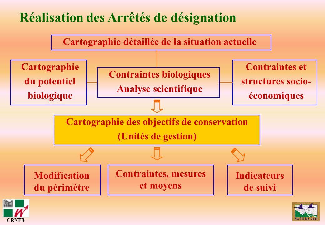 Réalisation des Arrêtés de désignation CRNFB Cartographie des objectifs de conservation (ZC et ZD) Cartographie détaillée de la situation actuelle Car