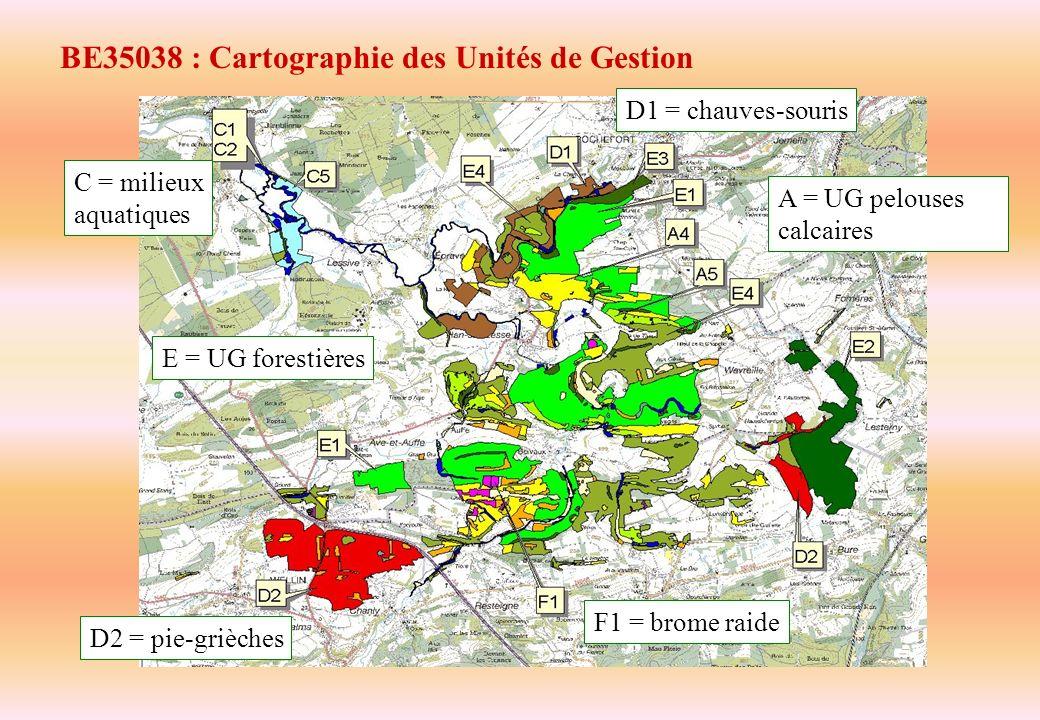 BE35038 : Cartographie des Unités de Gestion E = UG forestières D1 = chauves-souris C = milieux aquatiques D2 = pie-grièches F1 = brome raide A = UG p