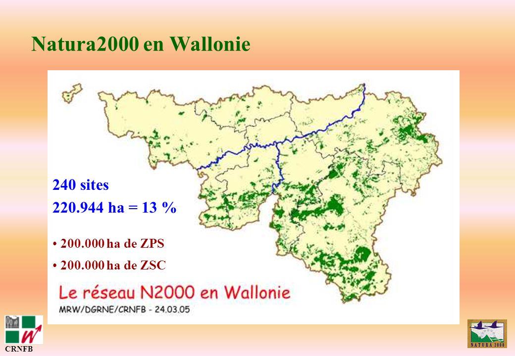 Natura2000 en Wallonie 240 sites 220.944 ha = 13 % 200.000 ha de ZPS 200.000 ha de ZSC CRNFB