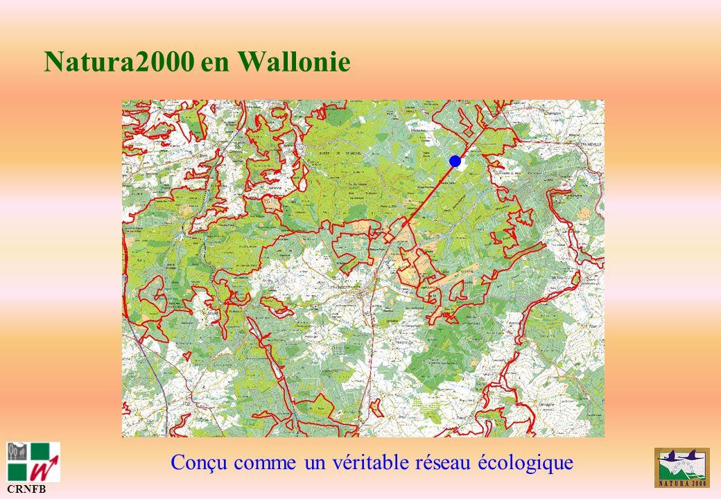 Natura2000 en Wallonie Principe de la mise en œuvre (LCN) : CRNFB Inventaires et cartographies (biologiques, socio-économiques, légales) Rédaction dun arrêté de désignation (objectifs, contraintes, moyens) Mise en œuvre avec des contrats de gestion Suivi et surveillance