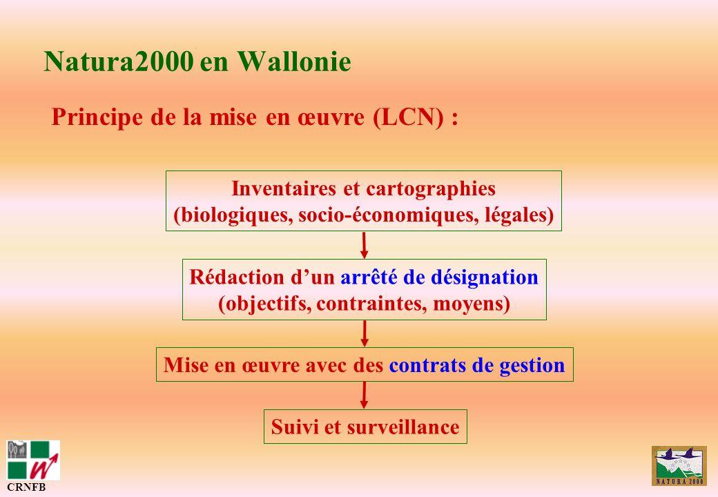 Natura2000 en Wallonie Principe de la mise en œuvre (LCN) : CRNFB Inventaires et cartographies (biologiques, socio-économiques, légales) Rédaction dun