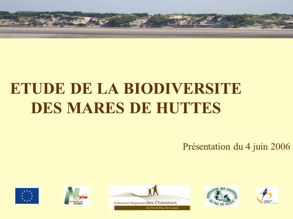 ETUDE DE LA BIODIVERSITE DES MARES DE HUTTES Présentation du 4 juin 2006