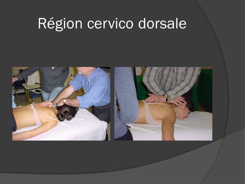 Région cervico dorsale