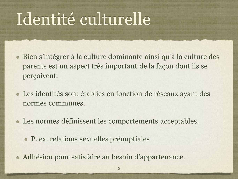 3 Identité culturelle Bien sintégrer à la culture dominante ainsi quà la culture des parents est un aspect très important de la façon dont ils se perçoivent.
