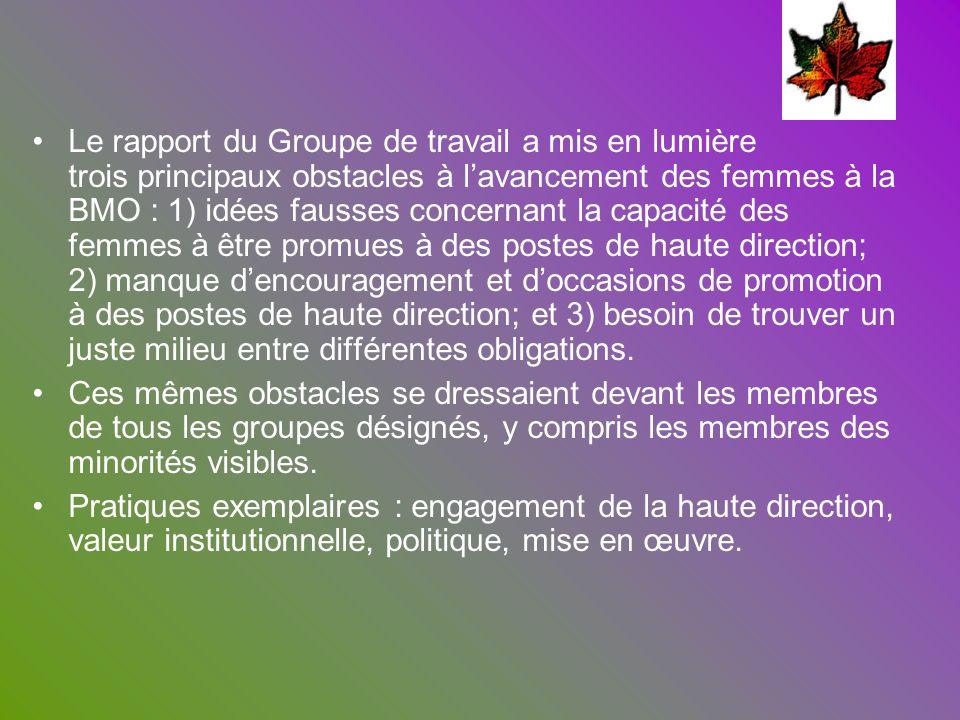 SaskTel (Lauréat du PE 2005) En 2004, SaskTel a préparé une vaste stratégie visant à constituer un effectif représentatif en se servant dinitiatives existantes en matière de diversité et en les élargissant, comme son Initiative en matière de participation des Autochtones au marché du travail, lancée en 1999.