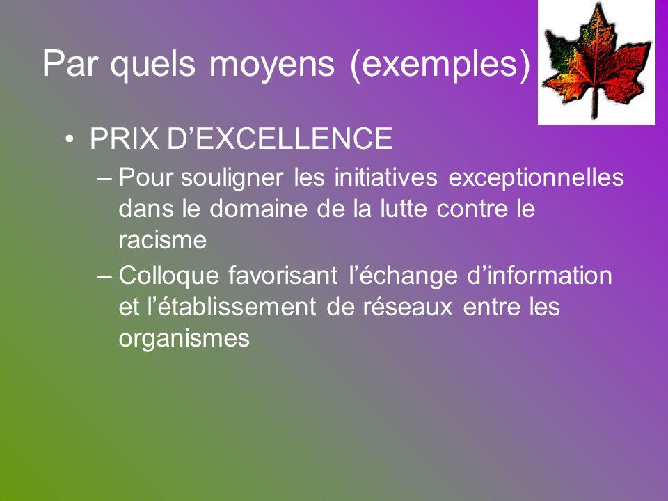 Par quels moyens (exemples) PRIX DEXCELLENCE –Pour souligner les initiatives exceptionnelles dans le domaine de la lutte contre le racisme –Colloque f
