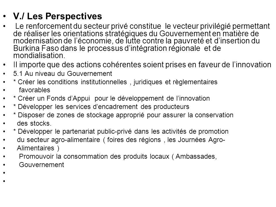 V./ Les Perspectives Le renforcement du secteur privé constitue le vecteur privilégié permettant de réaliser les orientations stratégiques du Gouverne