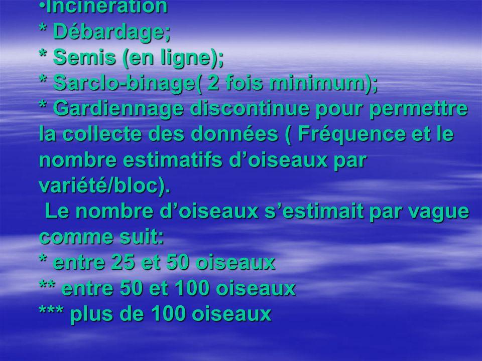 Incinération * Débardage; * Semis (en ligne); * Sarclo-binage( 2 fois minimum); * Gardiennage discontinue pour permettre la collecte des données ( Fréquence et le nombre estimatifs doiseaux par variété/bloc).