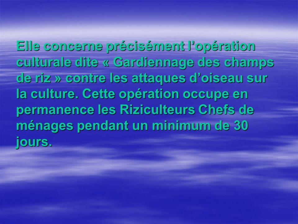Elle concerne précisément lopération culturale dite « Gardiennage des champs de riz » contre les attaques doiseau sur la culture.