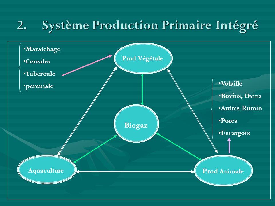 2.Système Production Primaire Intégré Prod Végétale AquacultureProd Animale Biogaz Prod AnimaleAquaculture Prod Végétale Biogaz Prod Animale Aquacultu