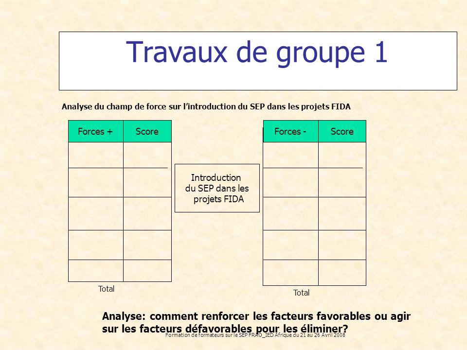 Formation de formateurs sur le SEP FRAO_IED Afrique du 21 au 26 Avril 2008 Travaux de groupe 1 Analyse du champ de force sur lintroduction du SEP dans