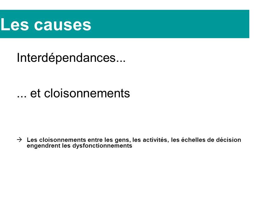 Les causes Interdépendances......