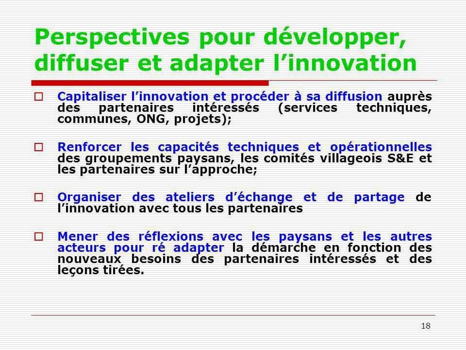 18 Perspectives pour développer, diffuser et adapter linnovation Capitaliser linnovation et procéder à sa diffusion auprès des partenaires intéressés