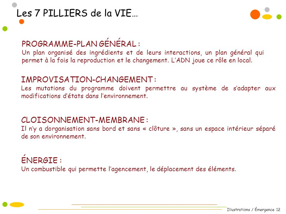 Illustrations / Émergence 12 Les 7 PILLIERS de la VIE… PROGRAMME-PLAN GÉNÉRAL : Un plan organisé des ingrédients et de leurs interactions, un plan général qui permet à la fois la reproduction et le changement.