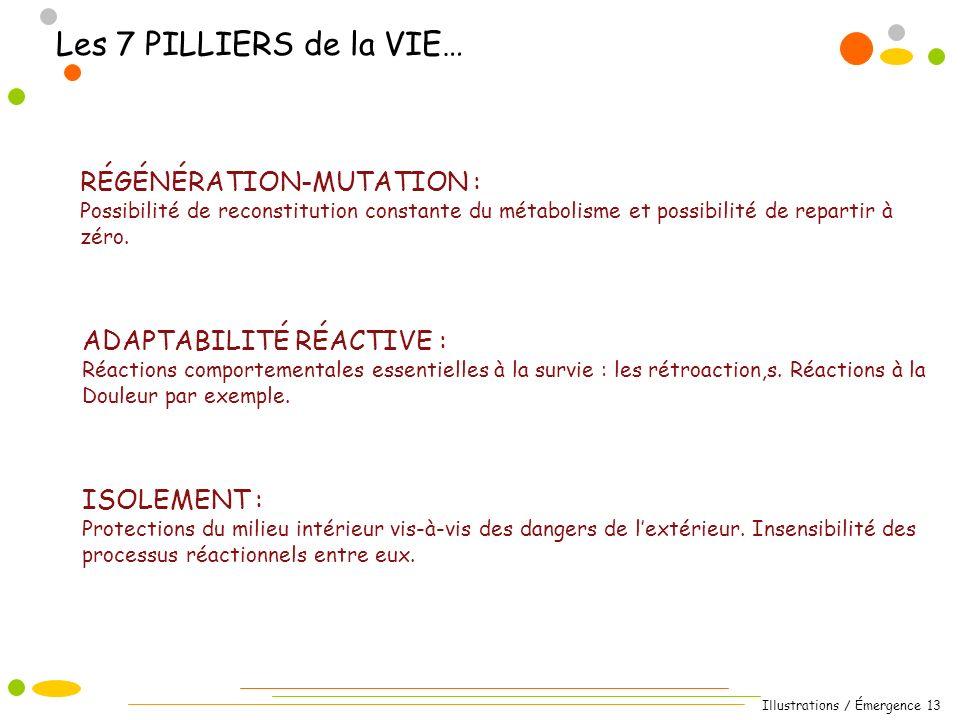 Illustrations / Émergence 13 Les 7 PILLIERS de la VIE… RÉGÉNÉRATION-MUTATION : Possibilité de reconstitution constante du métabolisme et possibilité de repartir à zéro.