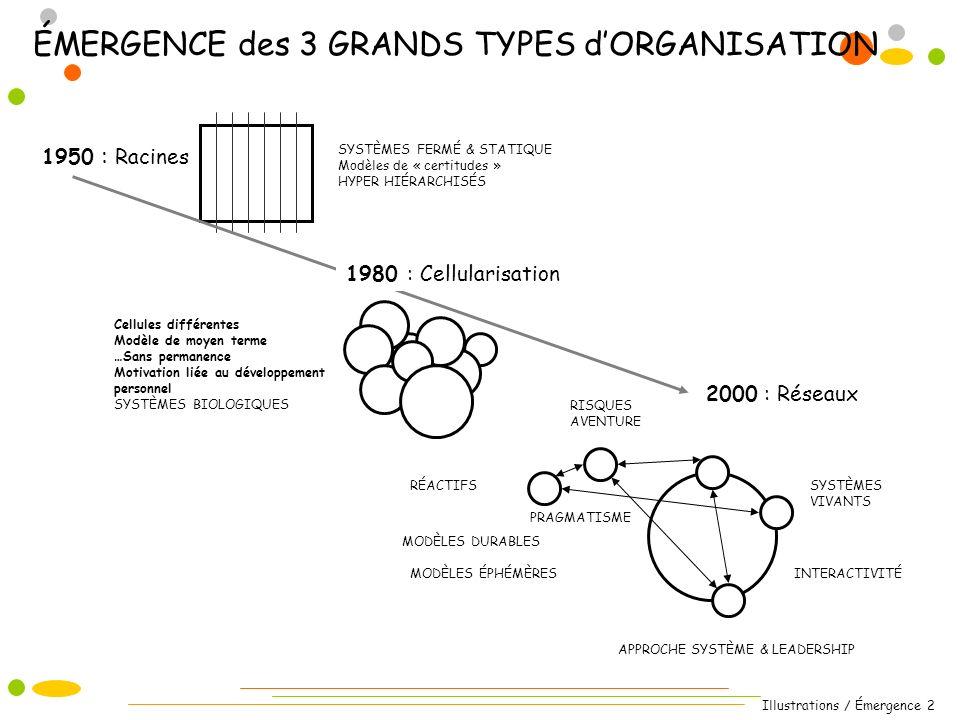 Illustrations / Émergence 2 ÉMERGENCE des 3 GRANDS TYPES dORGANISATION 1950 : Racines 2000 : Réseaux Cellules différentes Modèle de moyen terme …Sans
