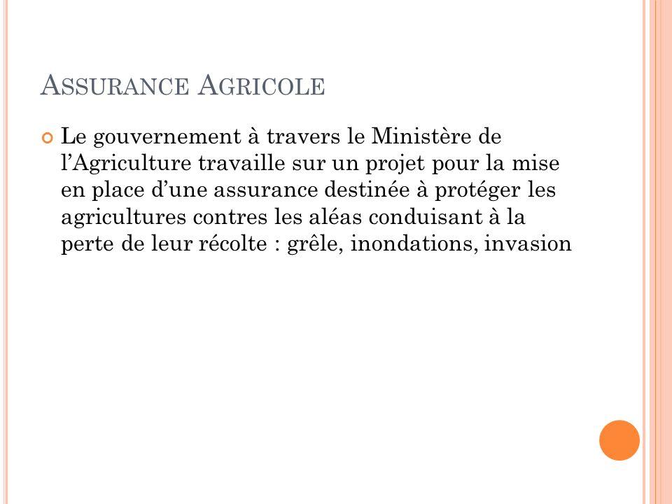 A SSURANCE A GRICOLE Le gouvernement à travers le Ministère de lAgriculture travaille sur un projet pour la mise en place dune assurance destinée à protéger les agricultures contres les aléas conduisant à la perte de leur récolte : grêle, inondations, invasion