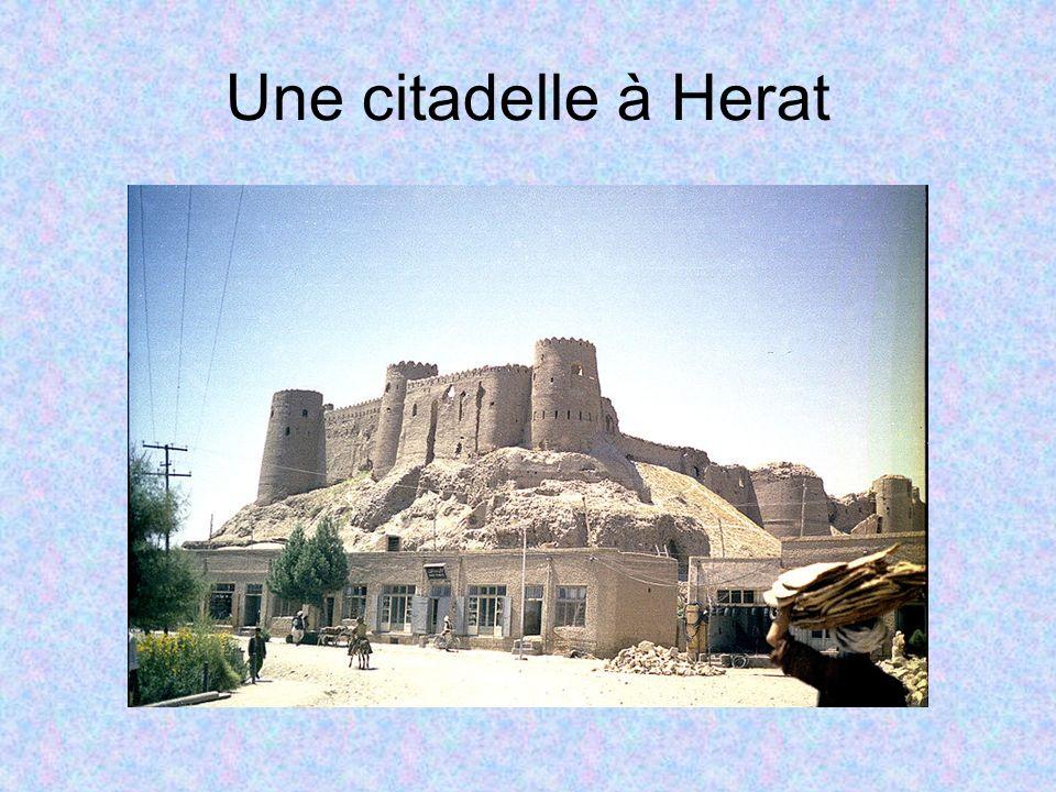 Une citadelle à Herat