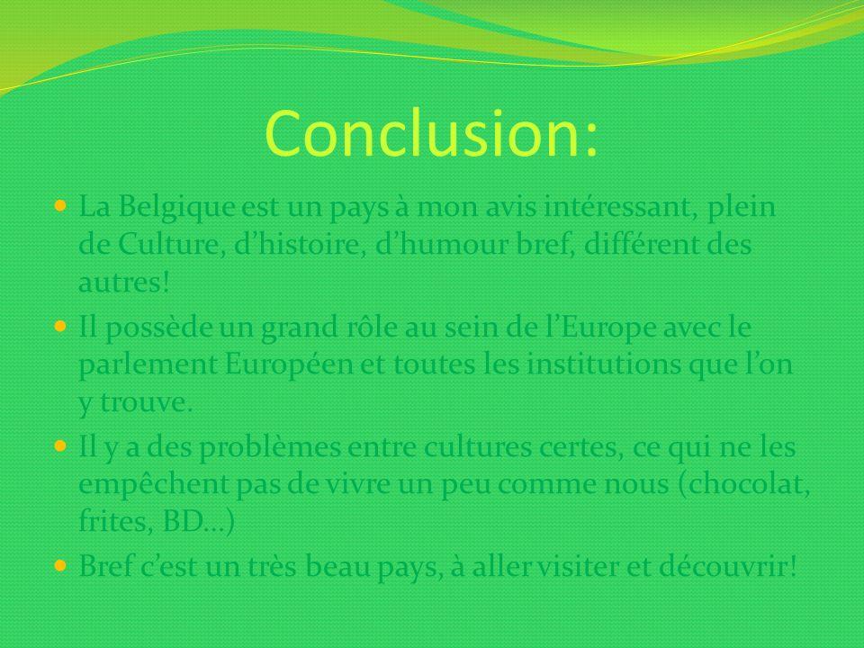 Conclusion: La Belgique est un pays à mon avis intéressant, plein de Culture, dhistoire, dhumour bref, différent des autres! Il possède un grand rôle