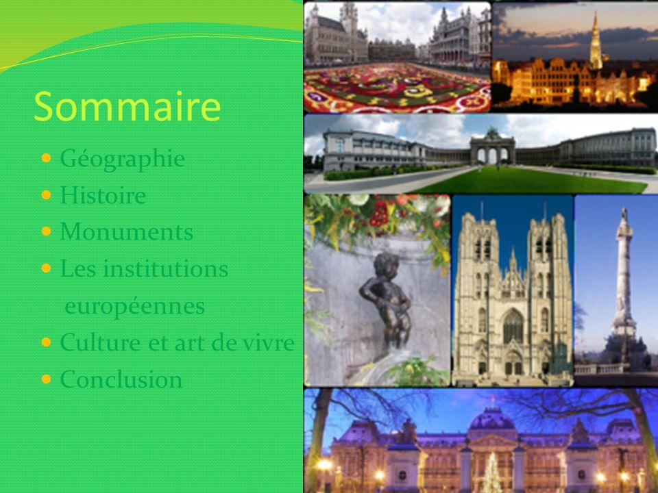 Sommaire Géographie Histoire Monuments Les institutions européennes Culture et art de vivre Conclusion