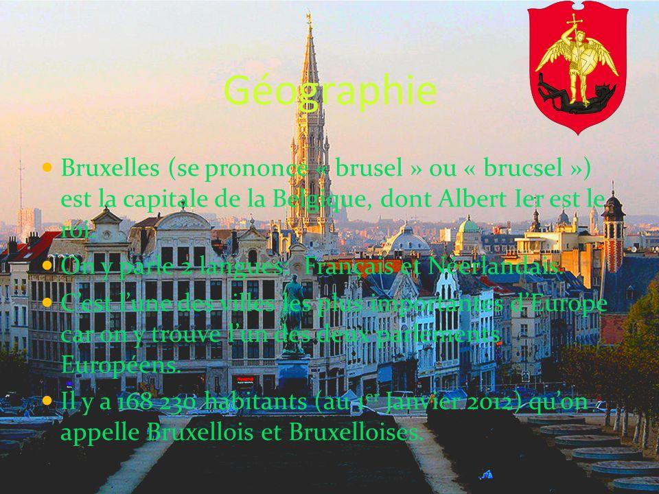 Géographie Bruxelles (se prononce « brusel » ou « brucsel ») est la capitale de la Belgique, dont Albert Ier est le roi. On y parle 2 langues: Françai