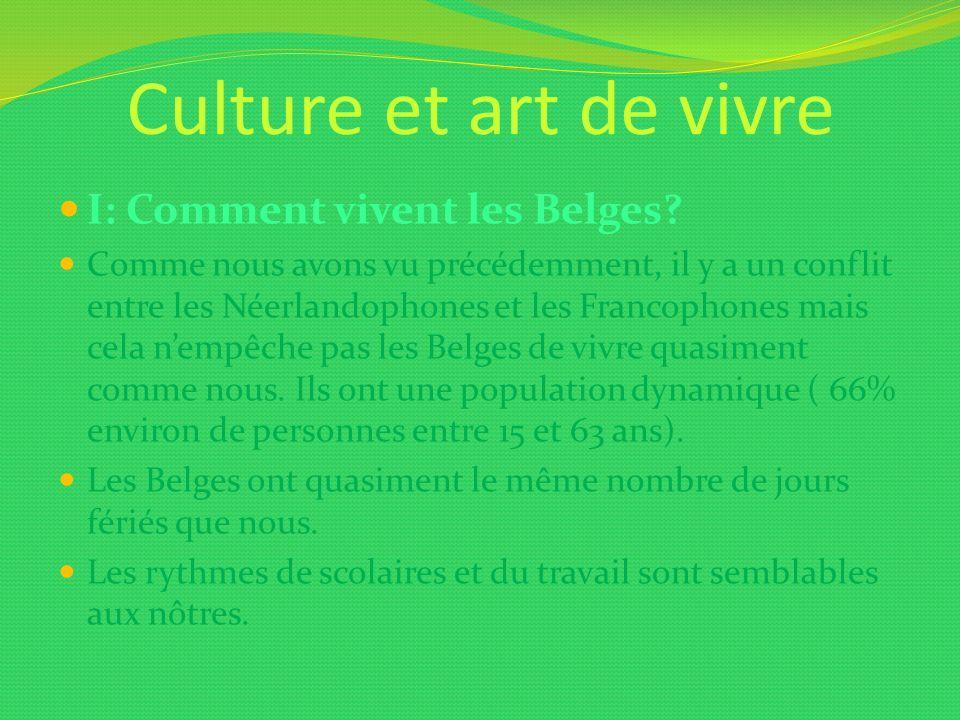Culture et art de vivre I: Comment vivent les Belges? Comme nous avons vu précédemment, il y a un conflit entre les Néerlandophones et les Francophone